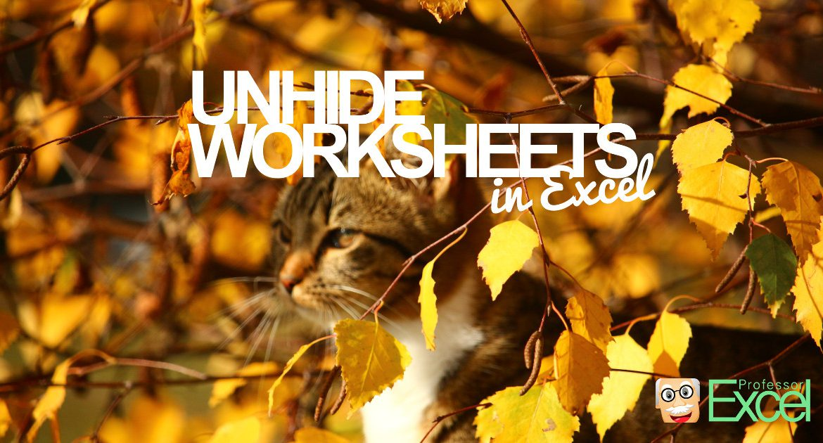 unhide, worksheets, all, excel, at once