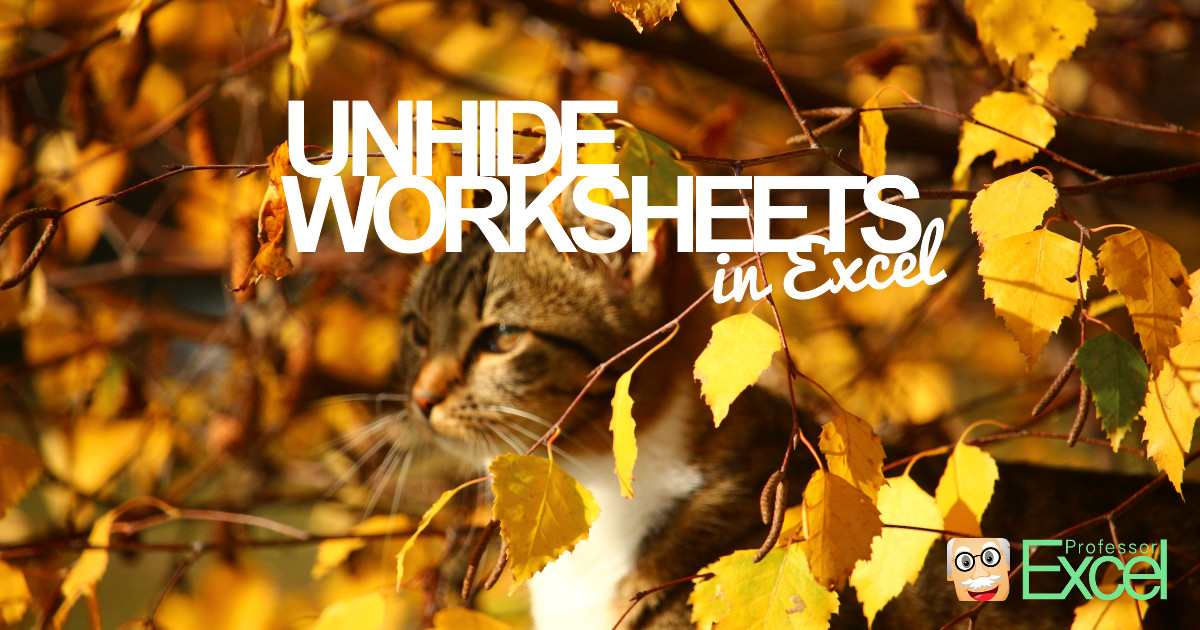 Unhide all hidden and very hidden sheets in excel at once unhide all hidden and very hidden sheets in excel at once professor excel ibookread Read Online