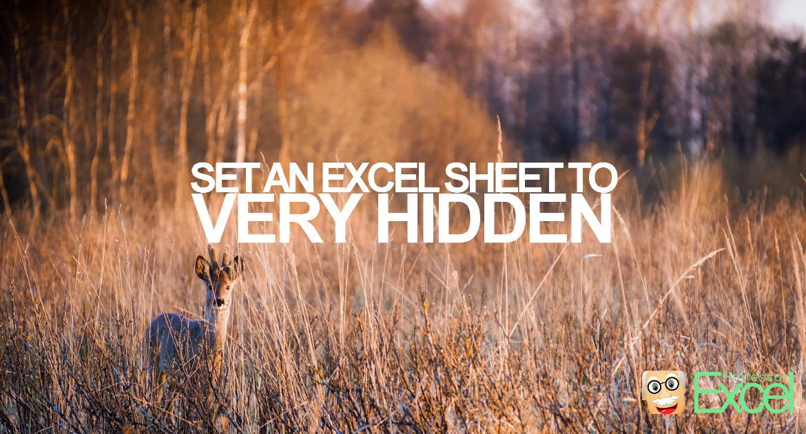 VERY HIDDEN: How to Hide an Excel Sheet.