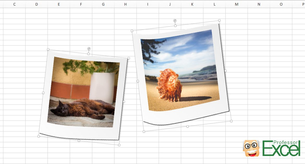Select all Pictures in Excel: 5 Easy Methods | Professor Excel ...