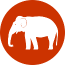 01_elephant