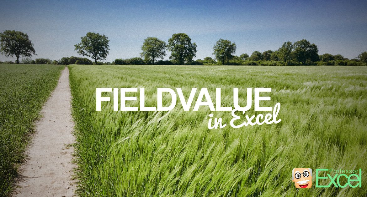 FIELDVALUE formula in Excel