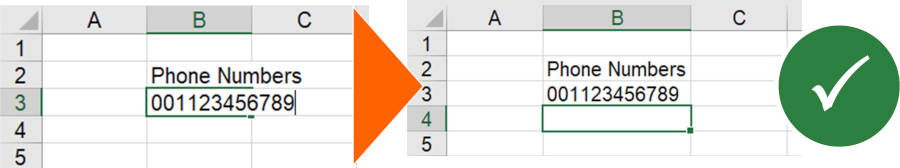 Setting the cell format to text usually also works for entering a phone number in Excel.